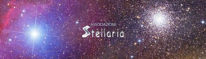 stellaria-banner
